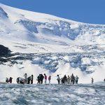 rocky icefield